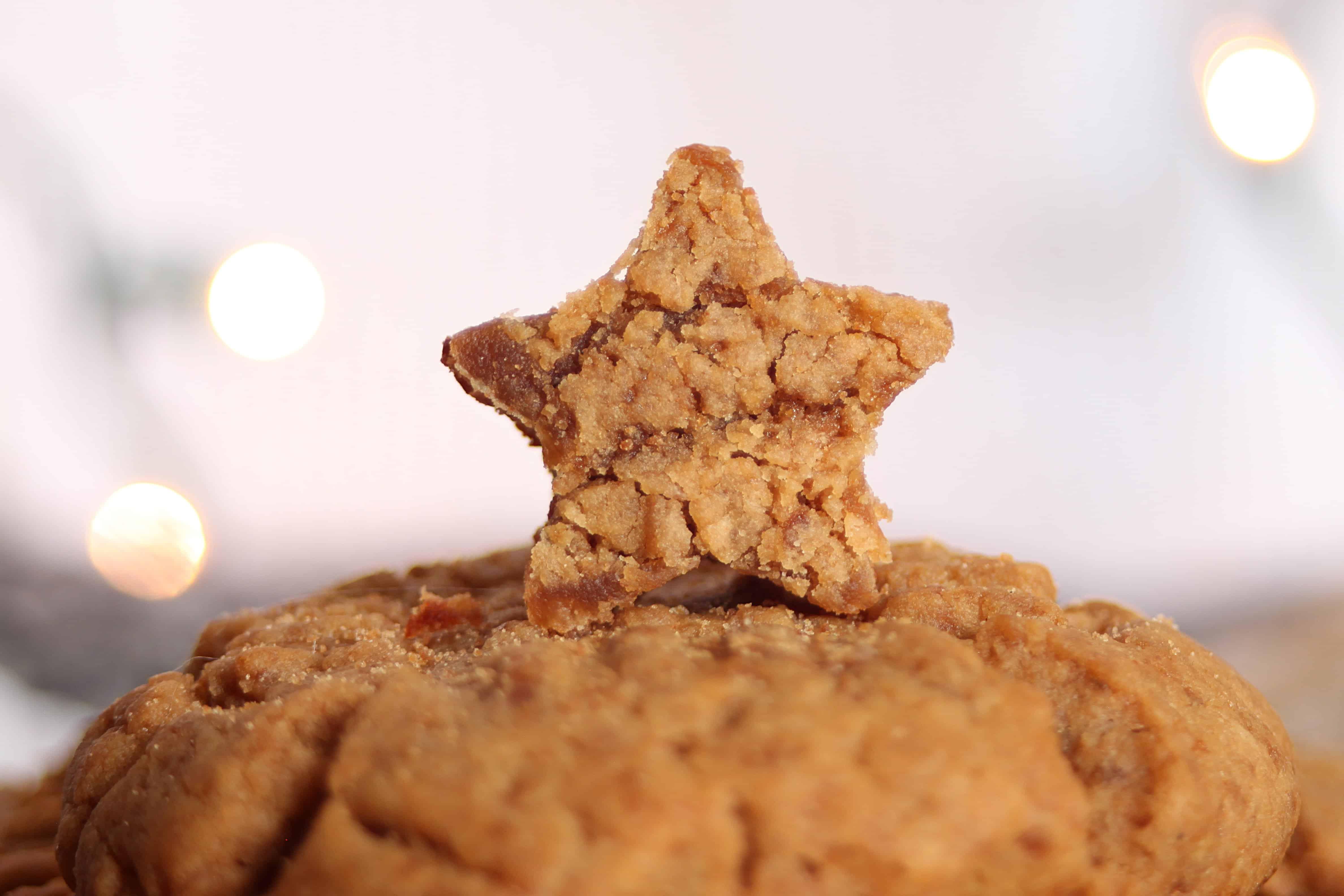 best vegan peanut butter cookies