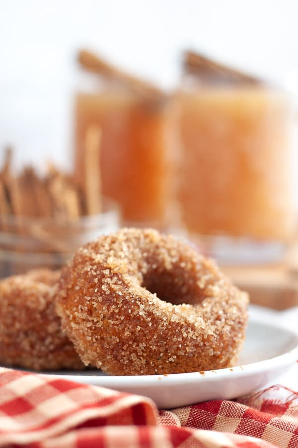 Best Apple Cider Donuts