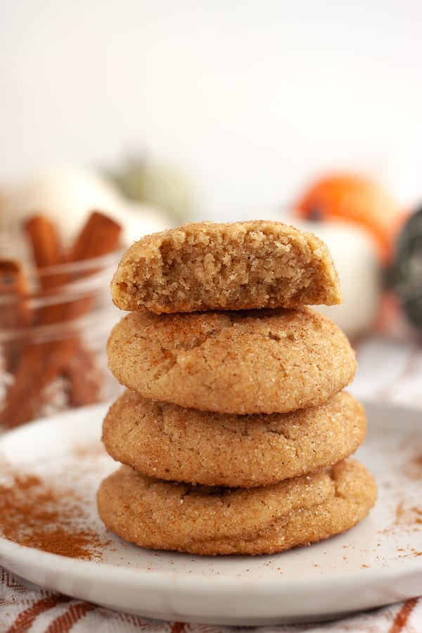 Soft Vegan Cinnamon Snickerdoodles