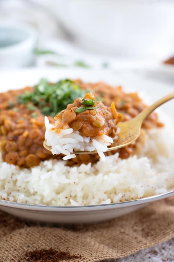Vegan Lentil Dahl Recipe
