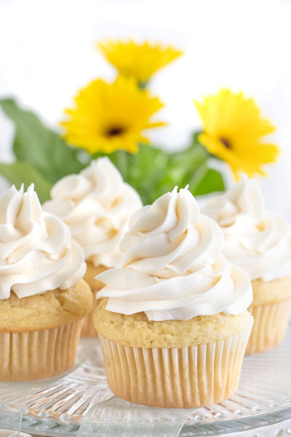 Vegan Frosting for Cupcakes